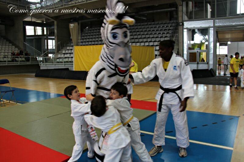 II festival de judo infantil